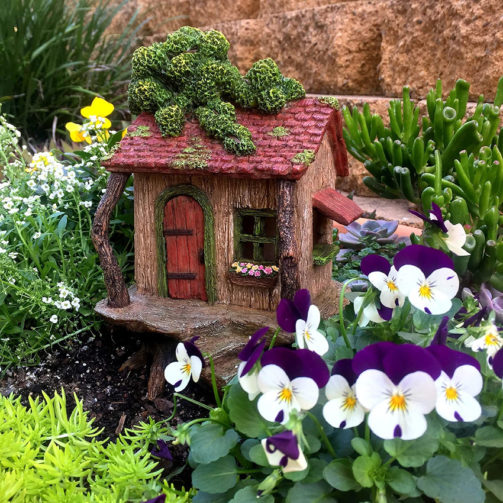 Fairy garden house nestled in with violas and other plants