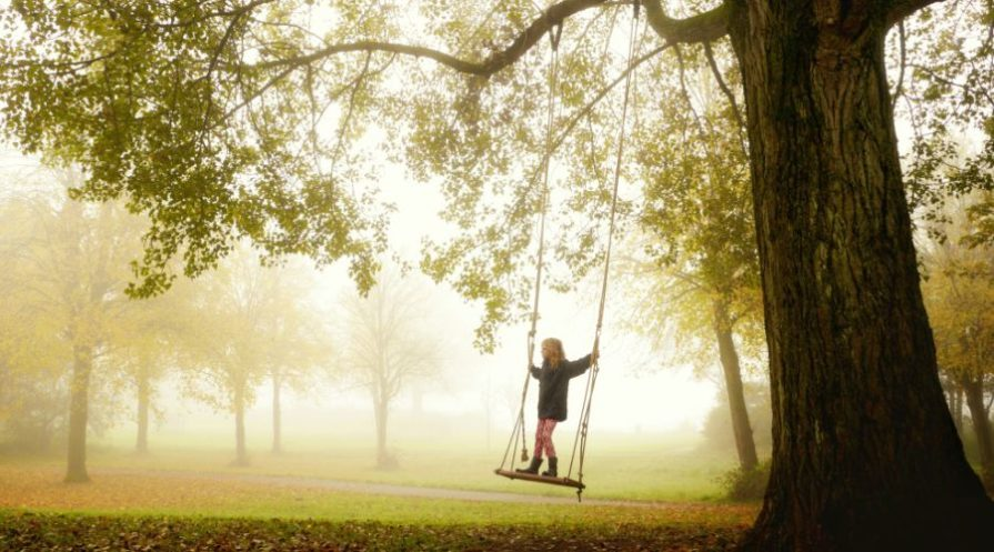 Girl swinging on a tree swing.