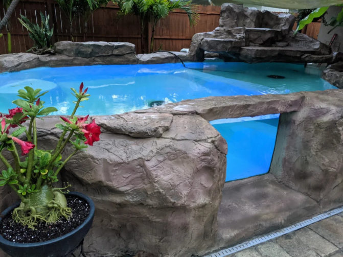 Glass and concrete koi pond with window