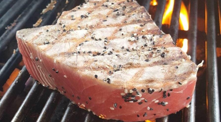 tuna featured image
