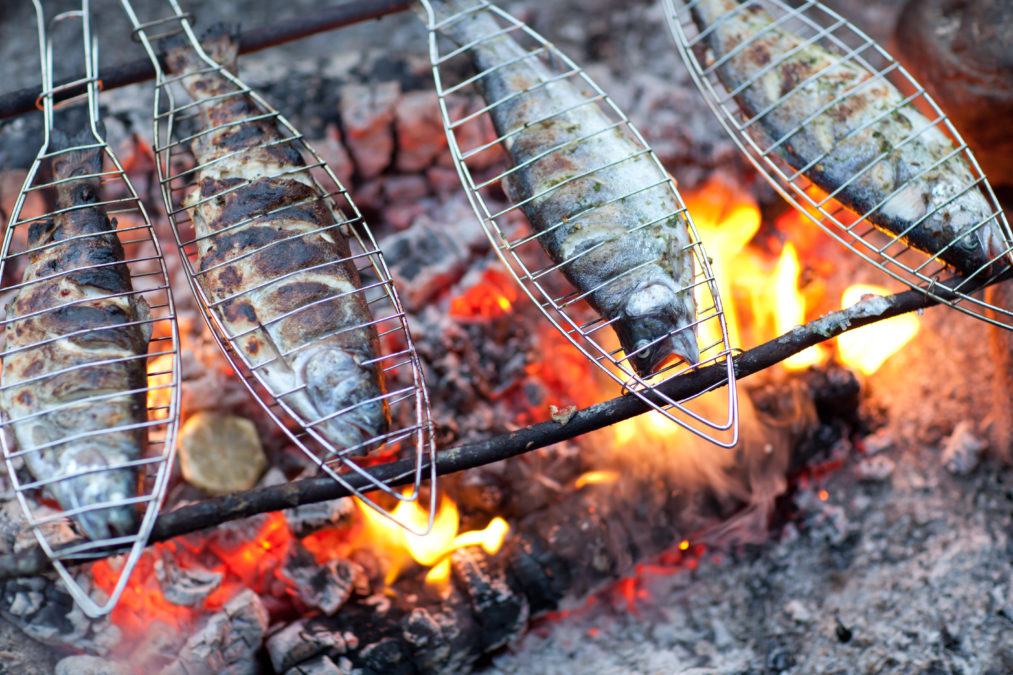 fish over campfire