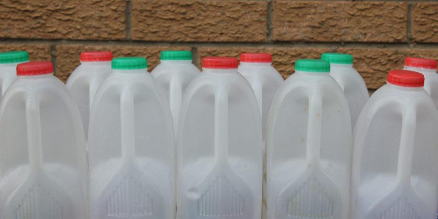 milk jugs lined up