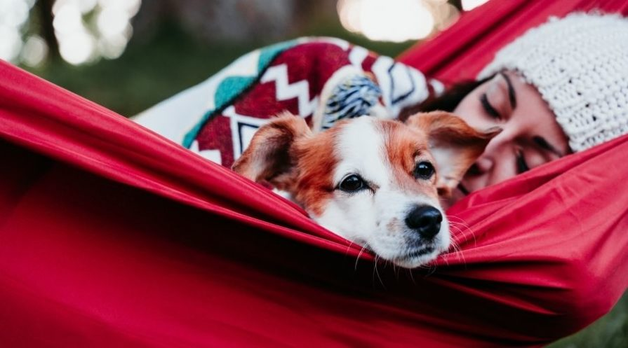 A woman wearing a white knit beanie is laying in a red hammock under a colorful, patterned blanket. In the hammock with her is a small white and brown dog looking over the side of the hammock.