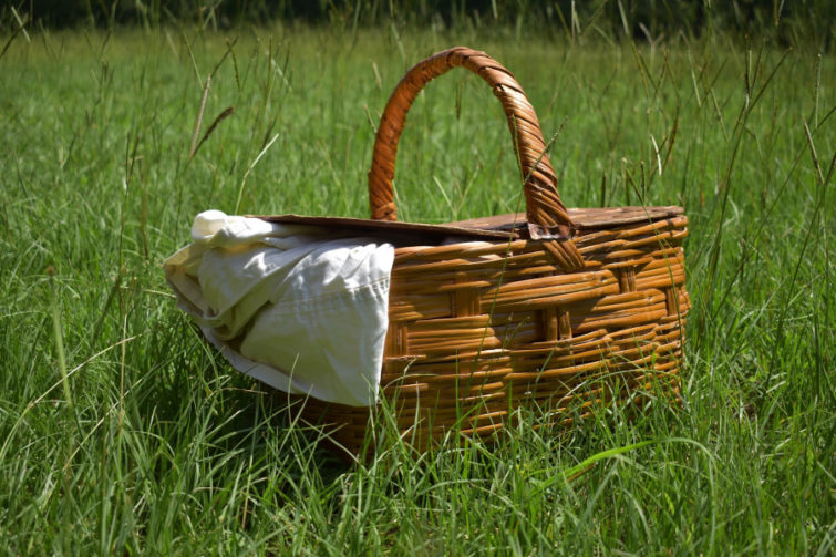 picnic basket with tea towel hanging out, sitting in grassy field