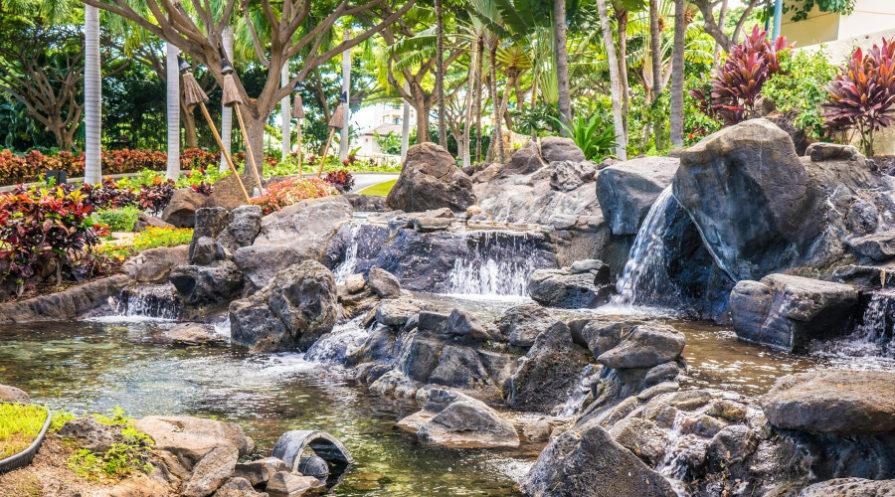 Backyard pond waterfall with tropical plants growing around