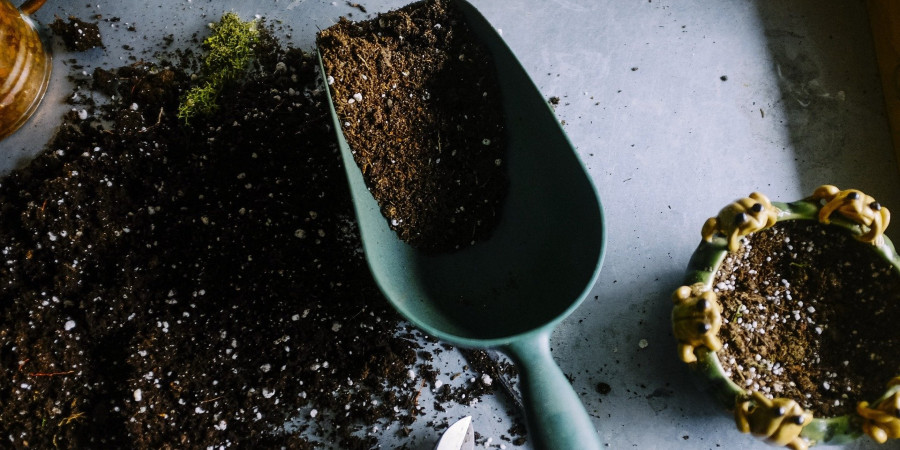 scoop, pot, and potting soil on table top