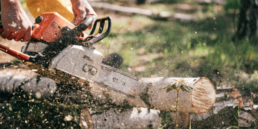 Chainsaw With Dust