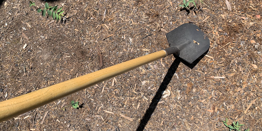 Digging Pond