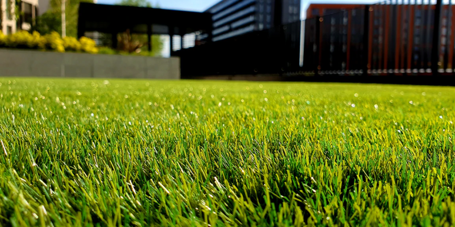 Grass in front of public building
