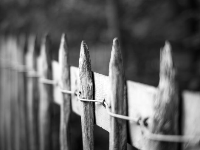 Wood fence using staples