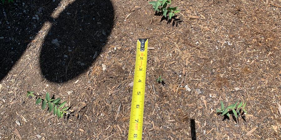 Measure Space