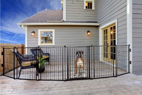 Carlson Pet Products 3-in-1 Weather-Resistant Outdoor Fence