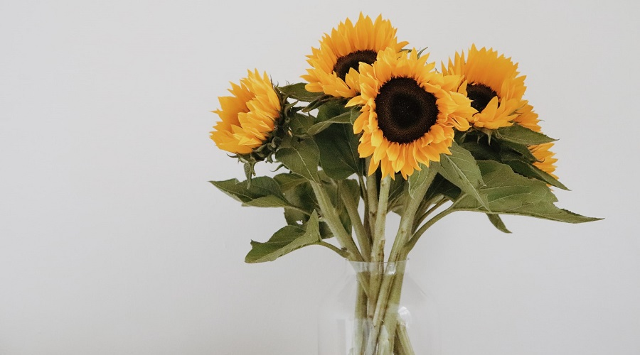 a bunch of sunflowers in a vase