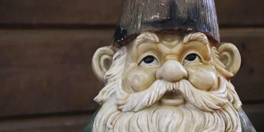 Closeup of Garden Gnome