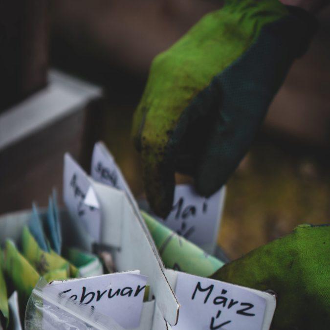 garden gloves and calendar