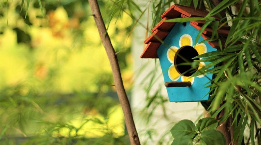 blue birdhouse in the garden