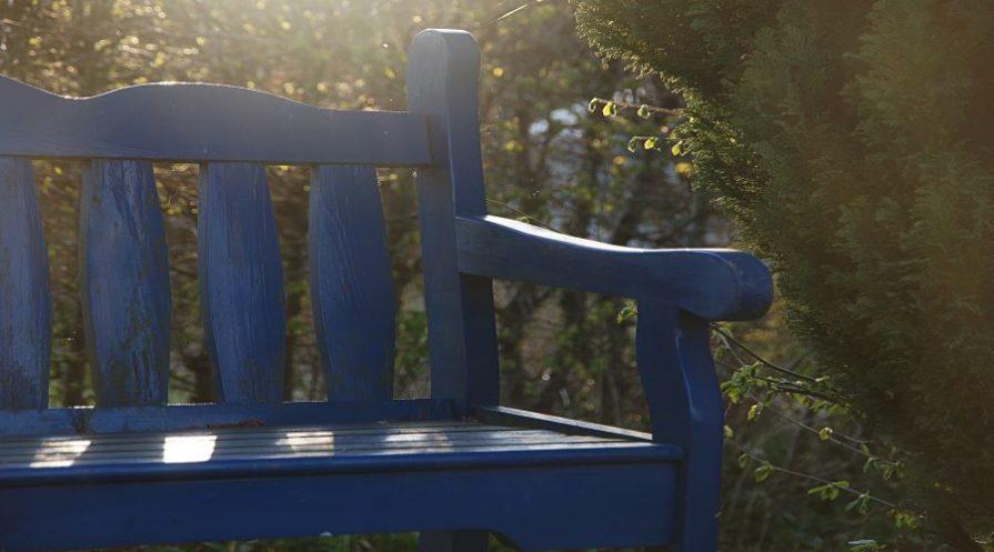painted blue garden bench