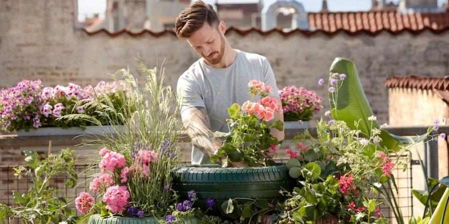 Man With Rose Garden