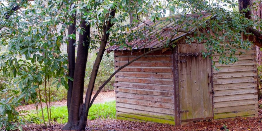 Wooden Shed Next To Tree