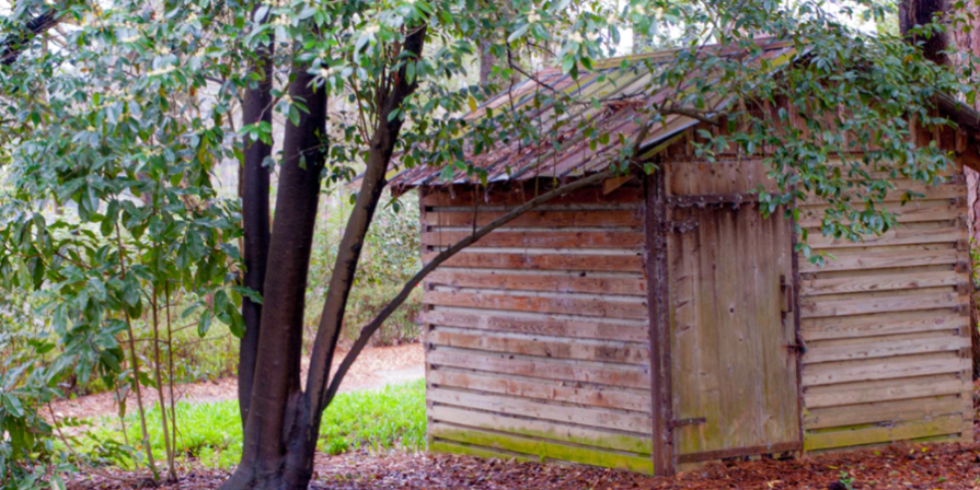Wooden Shed in the Woods