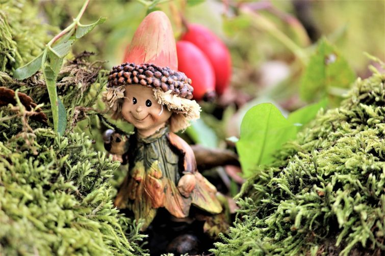 Fairy garden moss lifestyle