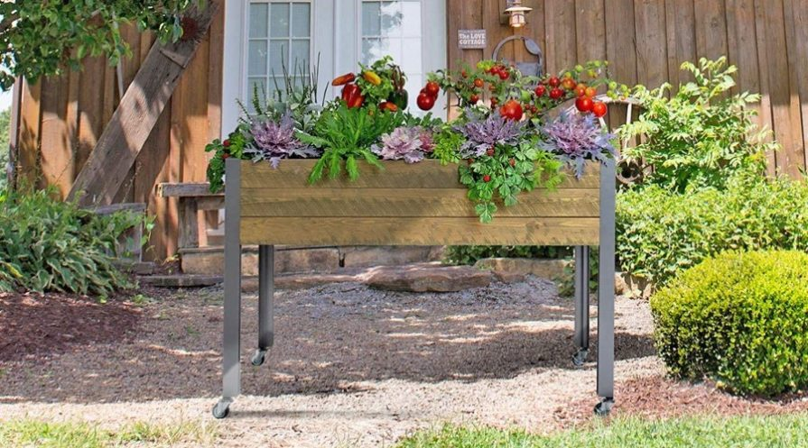 A raised wooden garden bed, fully planted, sitting outdoors in front of someone's house