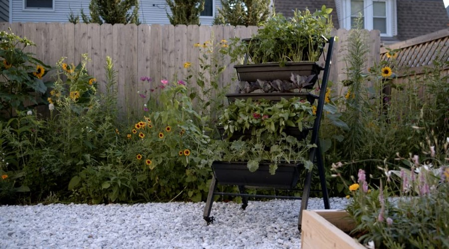 a tiered garden planter, fully planted, sitting on a gravel surface by a wooden privacy fence