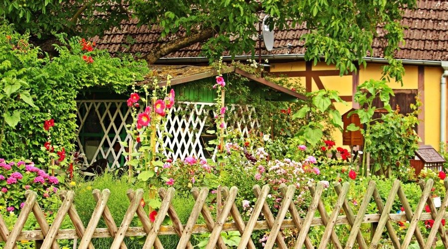 a cottage home surrounded by an elaborate garden