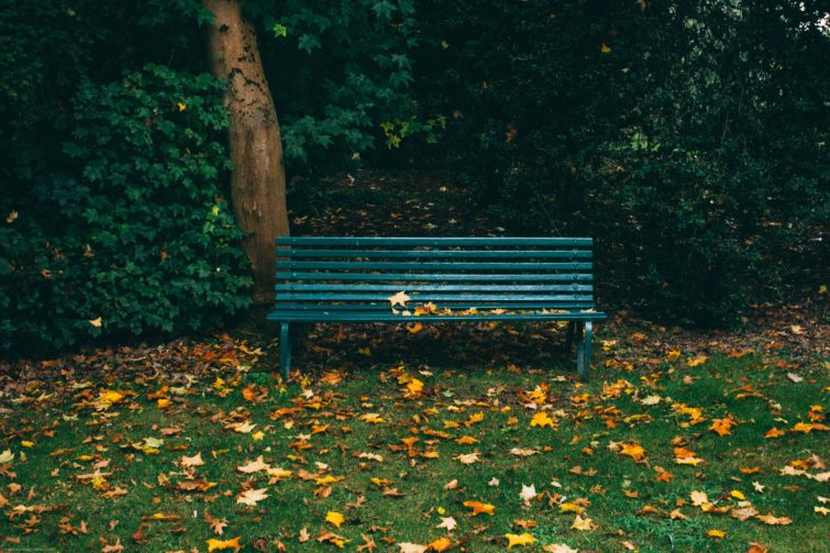 Metal Bench in the park