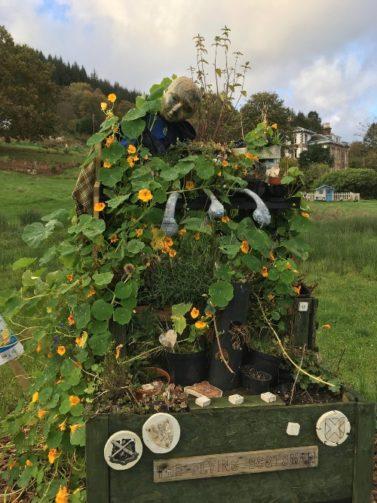 Vine plants and decorative pieces bursting out of pallet wood planter