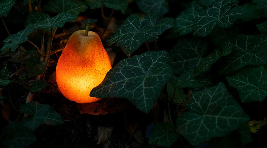 glowing fruit light