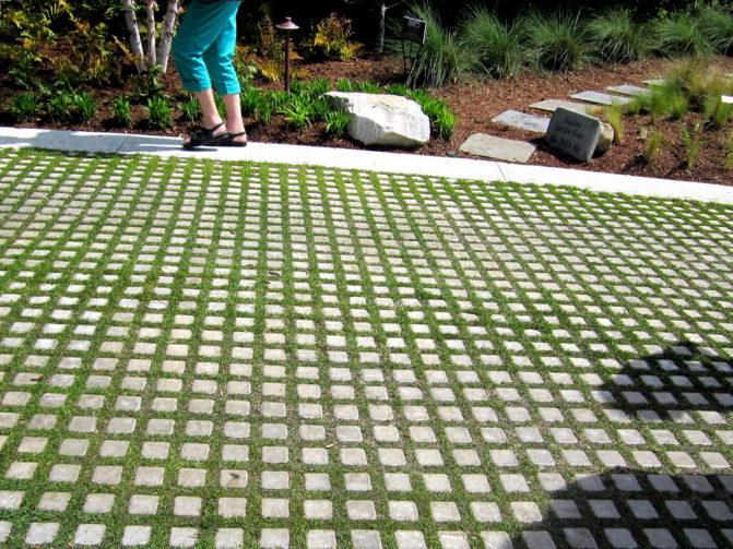 Grass block pavers