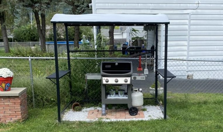 Backyard grill canopy