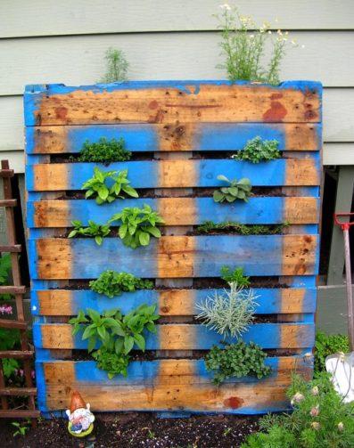 Herb garden in pallet wood