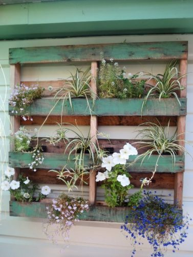 Half-painted green pallet filled with flowers