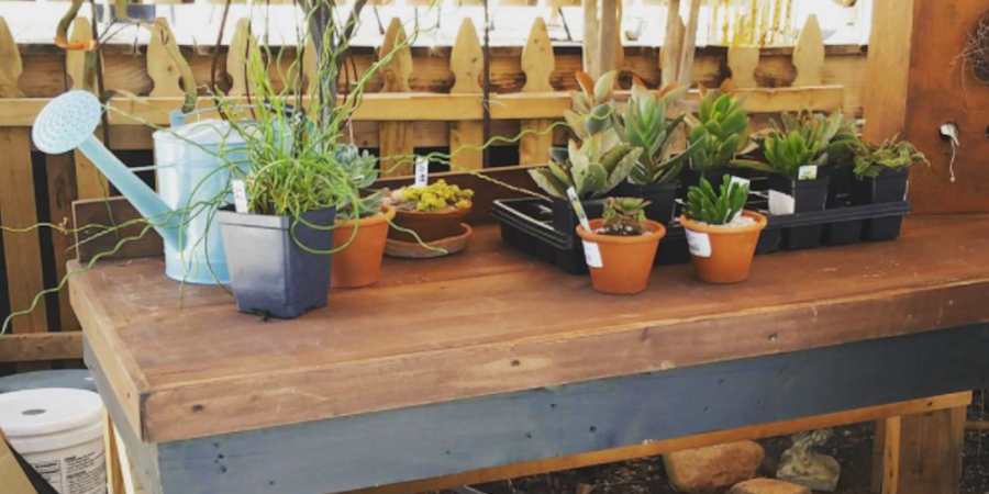 Potting Bench from Wooden Pallets
