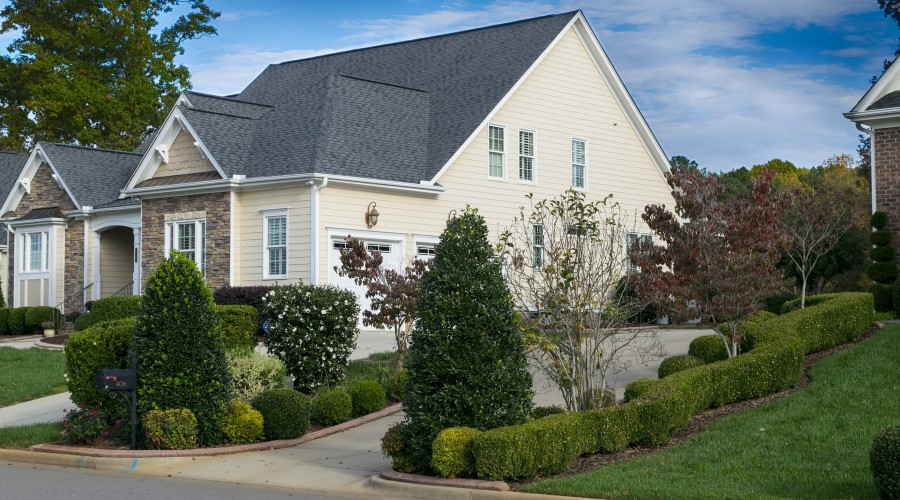 a house with trees and shrubs lining the driveway