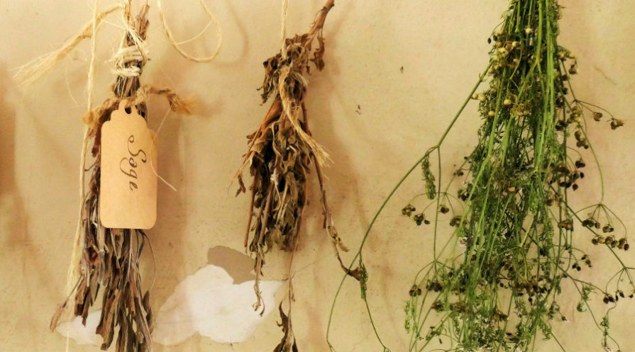 Herbs hanging on twine with name tags
