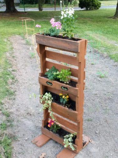 Vertical herb garden built from pallet wood