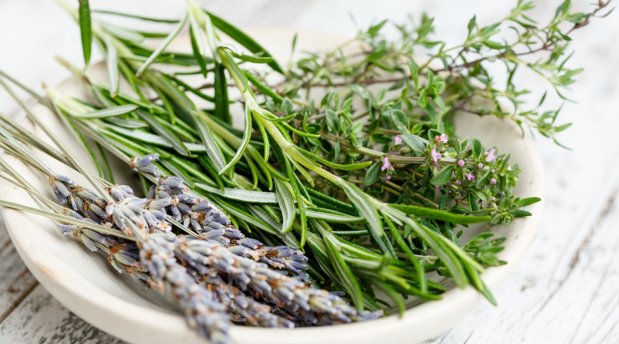 Mix of fresh herbs in a white bowl