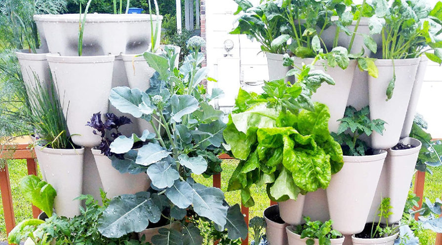 Two vertical garden planters hanging side-by-side