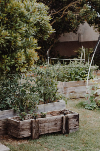 Raised planters for various types of plants in garden