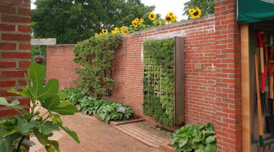 a vertical garden in a wooden frame mounted on a brick wall