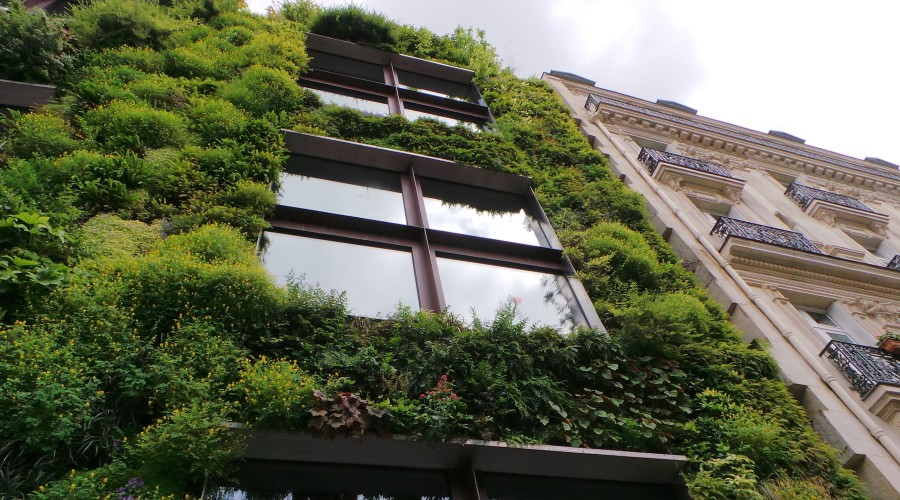 a living wall on the side of a large commercial building