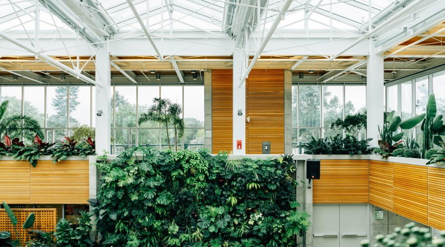 an indoor space with a living wall and houseplants around the exterior of the space