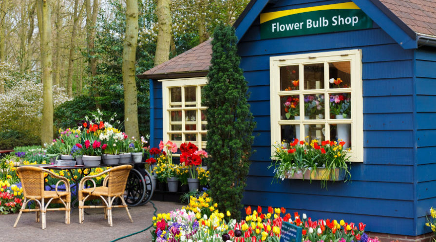 Blue garden bulb shop with plants all around