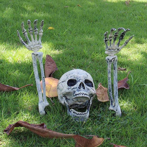 Skeleton stakes