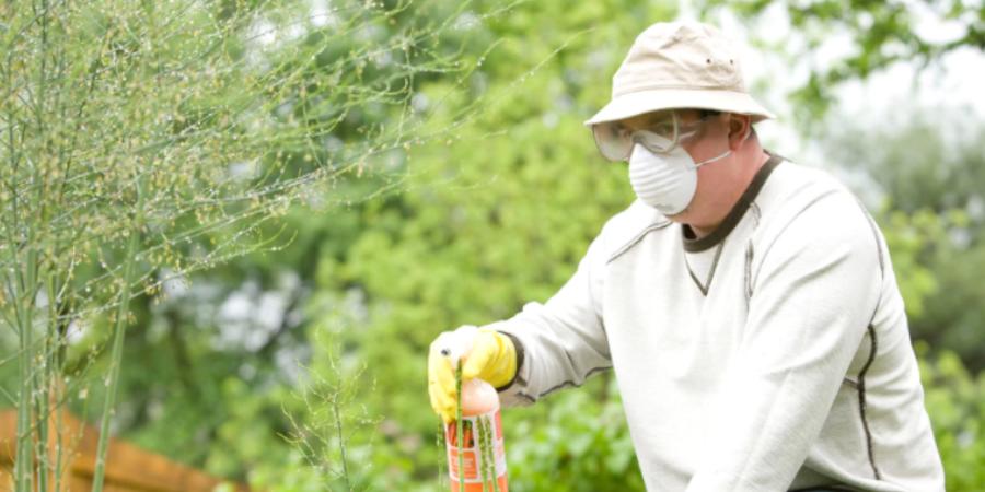 Gardener With Fertilizer