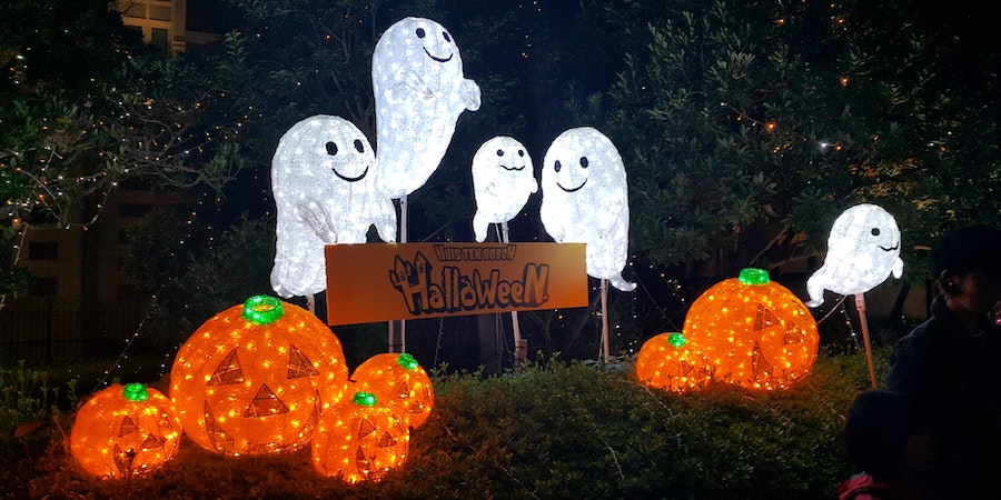 Light up pumpkins and ghosts Halloween decorations