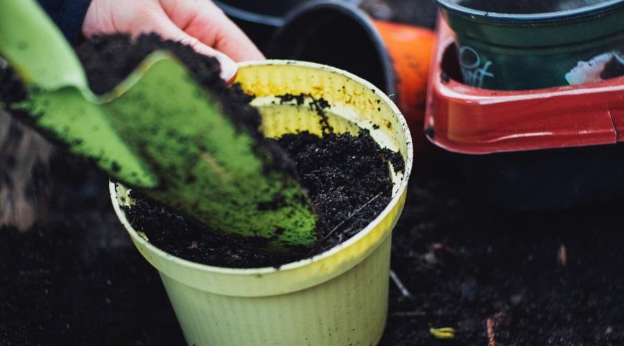 fertilizers in soil